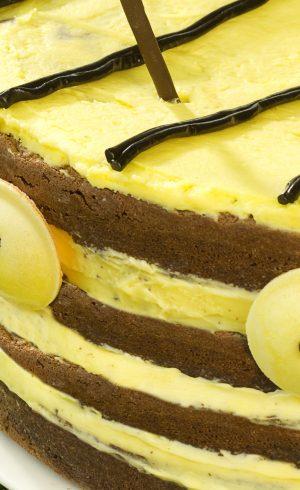 Gâteau Abeille